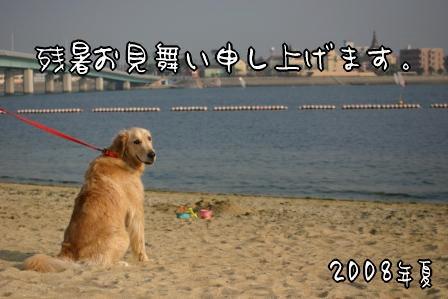 2008残暑お見舞い.JPG