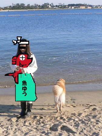 魚屋ゆうのコピー.jpg